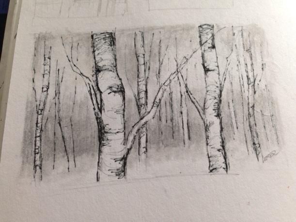 how to draw a birch tree forbkids